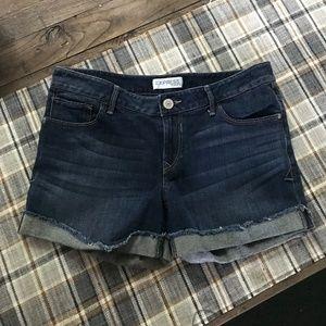 Express Shorts - Size 6